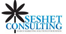 The Blog at Seshet Consulting